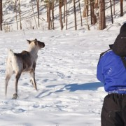 Снегоходный тур в Карелии