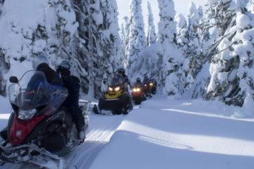 Снегоходный тур 14 февраля