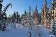 Рыбалка в северной Карелии зимой на снегоходах