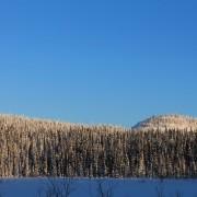 Вершины небольших гор севернее НП Паанаярви