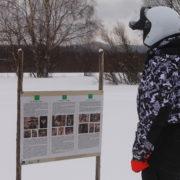 Зима в деревне Вартиолампи