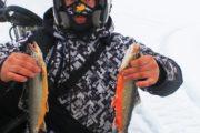 Рыбалка на Кольском. Тур
