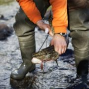 Малый рыболовный тур