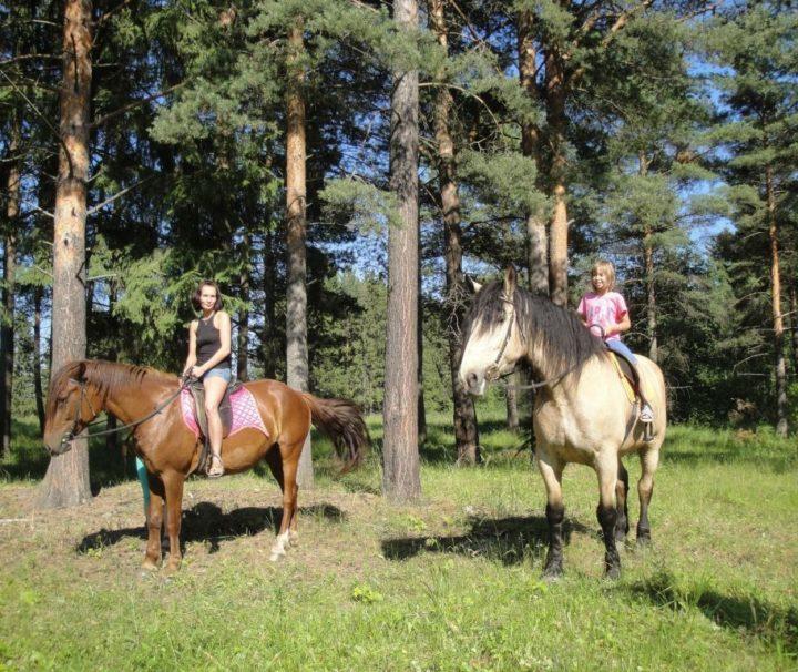 Комбинированный тур: конная прогулка + сафари на квадроциклах