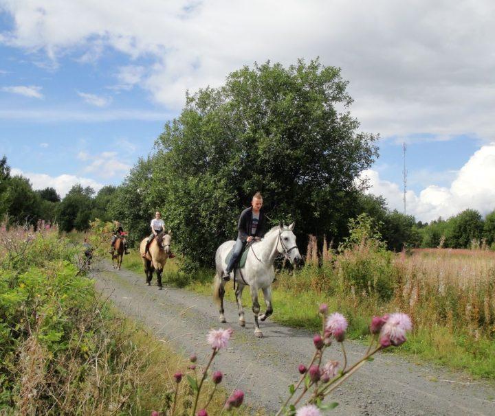 Шуйский мультиактив (конная прогулка + рафтинг)