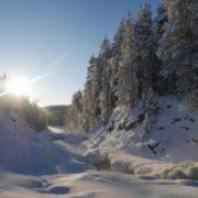 """Новый год на базе """"Малая медвежка"""" с посещением острова Кижи"""